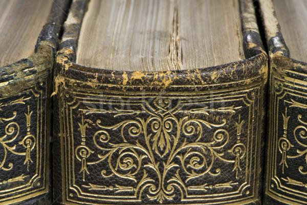 öreg könyvek polc francia lexikon közelkép Stock fotó © deyangeorgiev
