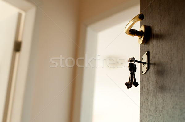 Porte ouverte touches immobilier maison maison porte Photo stock © deyangeorgiev