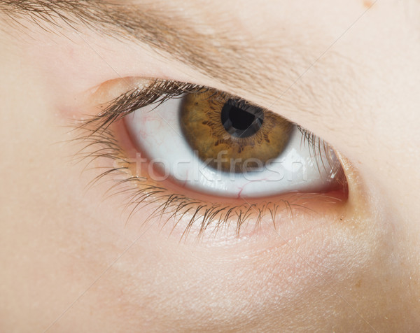 Humanismo olho marrom cor Foto stock © deyangeorgiev