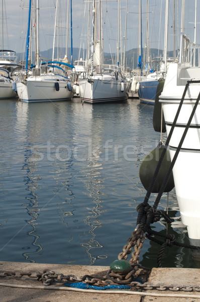 Anchored yachts in St. Tropez  Stock photo © deyangeorgiev