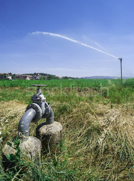 Agricultural irrigation systems Stock photo © deyangeorgiev