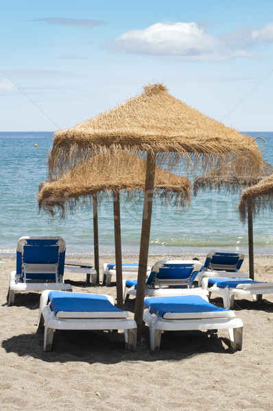 Straw beach umbrellas and sunbeds Stock photo © deyangeorgiev