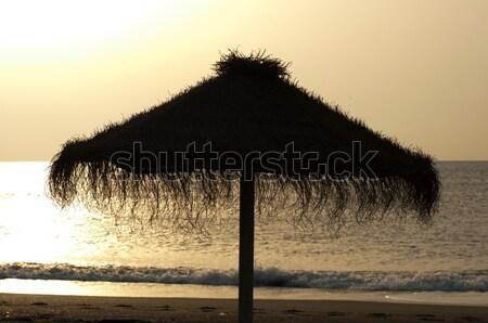 Straw umbrella on sunrize  Stock photo © deyangeorgiev