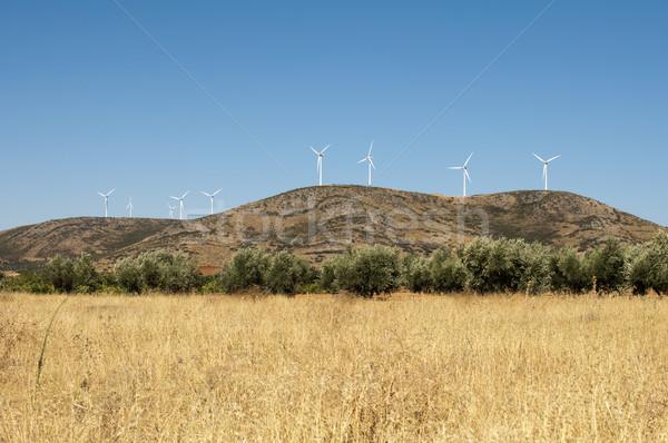 Wind generators on the top of the mountain Stock photo © deyangeorgiev