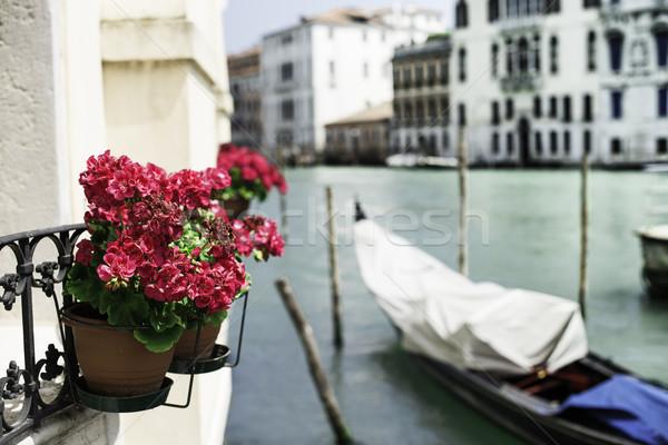 Eski gondol Venedik tekne saksı kırmızı çiçekler Stok fotoğraf © deyangeorgiev