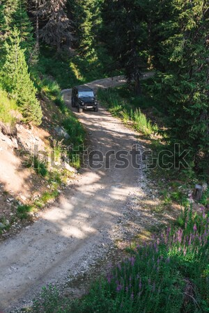 Autó hegy út fekete bent zöld Stock fotó © deyangeorgiev