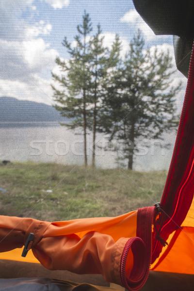 Stock fotó: Kilátás · bent · sátor · ki · erdő · tavasz