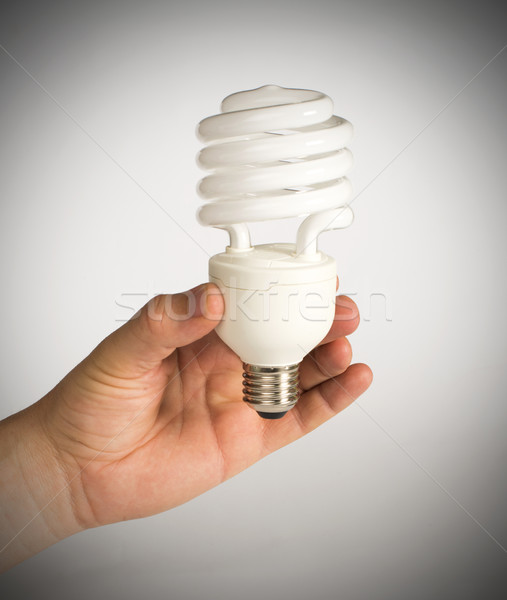 Ecological economical lamp Stock photo © deyangeorgiev