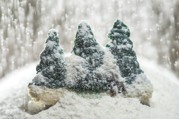 Pine trees during the winter Stock photo © deyangeorgiev