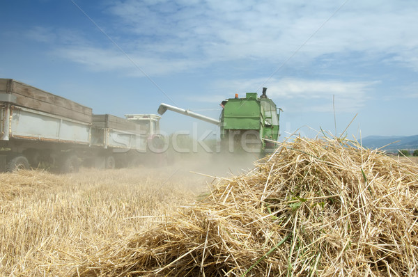 Tractor and combine harvesting Stock photo © deyangeorgiev