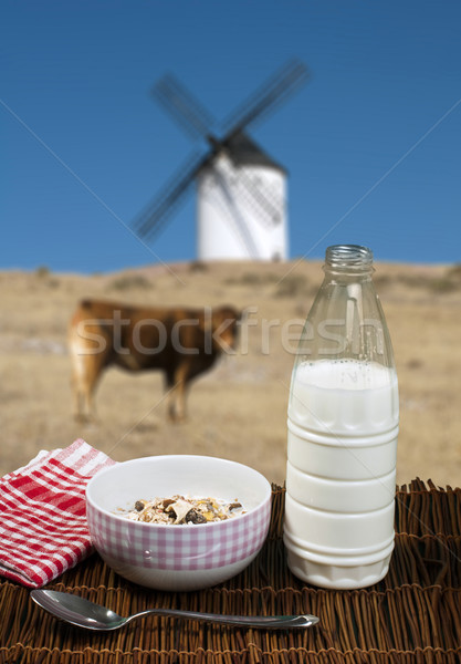 Muesli breakfast in a bow, spoon and milk Stock photo © deyangeorgiev