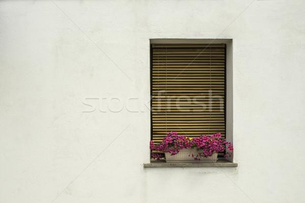 ベニスの 窓 花 白 壁 スタイル ストックフォト © deyangeorgiev
