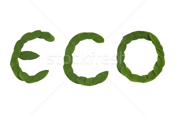 Eco text Stock photo © deyangeorgiev