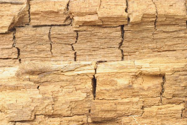 Verweerde gebarsten hout oppervlak textuur boom Stockfoto © dezign56