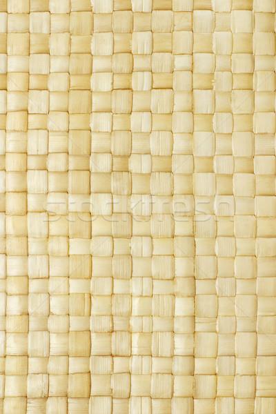 Palmbladeren textuur achtergrond palm bladeren Stockfoto © dezign56