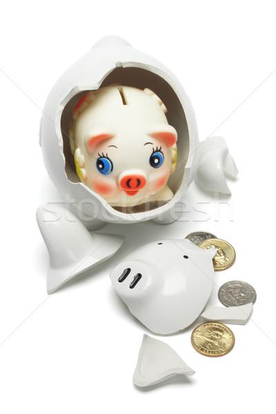 Coloful baby piggybank Stock photo © dezign56