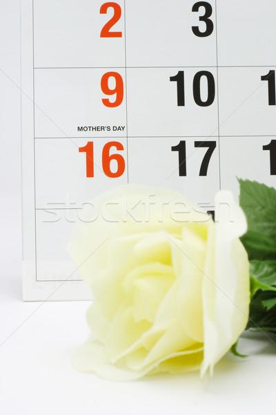 Mother's day Stock photo © dezign56