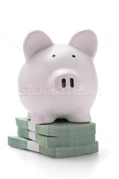 Piggy bank on stacks of money Stock photo © dezign56