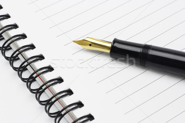 Fountain pen on notebook Stock photo © dezign56