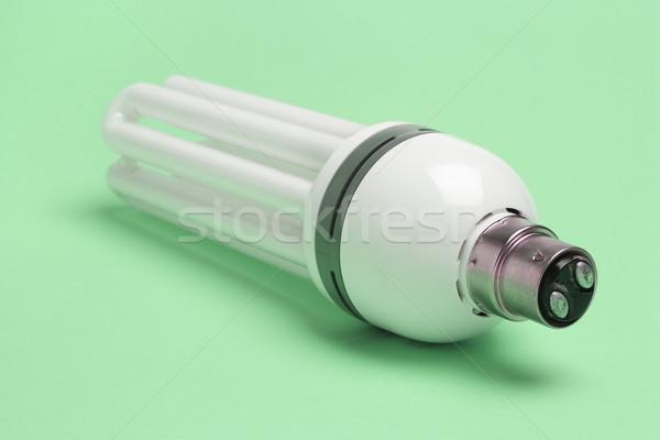 Energy saving light bulb Stock photo © dezign56