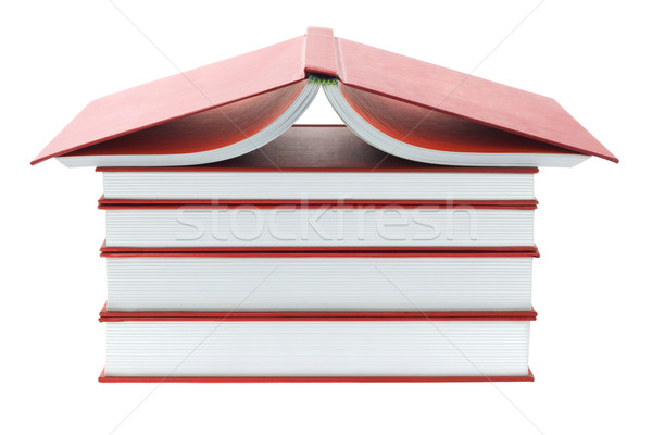 Thick Red Books Stock photo © dezign56