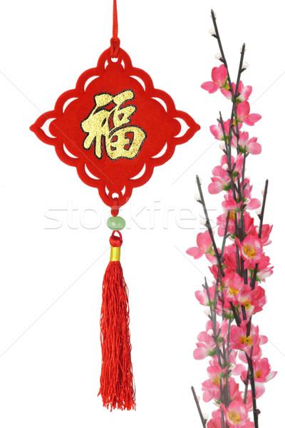 Kínai új év hagyományos dísz szilva virág fehér Stock fotó © dezign56