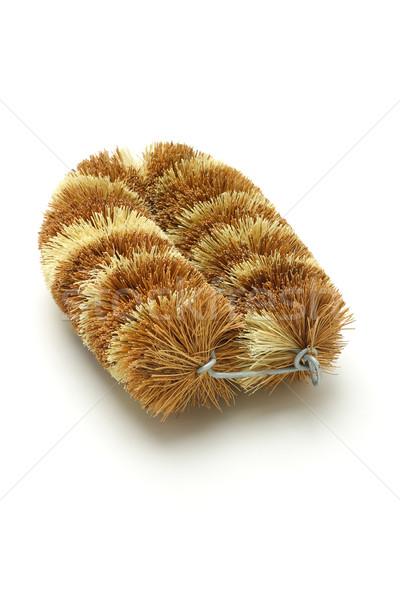 природного кокосового волокно щетка очистки природы Сток-фото © dezign56