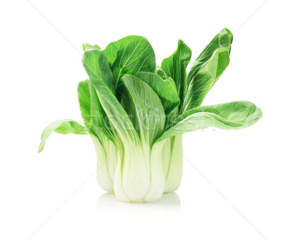 Fresh Chinese Cabbage Stock photo © dezign56
