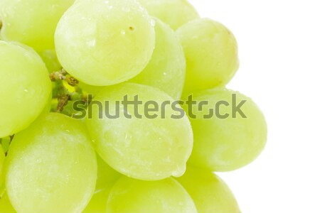 Bunch of green grapes Stock photo © dezign56