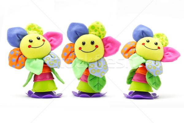 подсолнечника кукол три белый цветок Сток-фото © dezign56