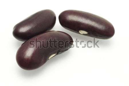 три темно красный почка бобов белый Сток-фото © dezign56