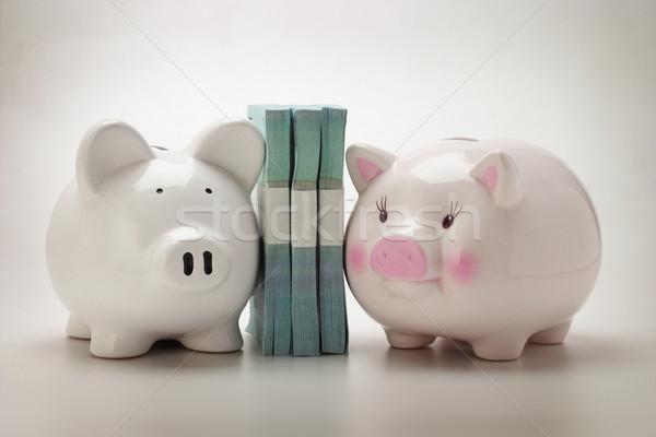 Piggybanks and paper money Stock photo © dezign56