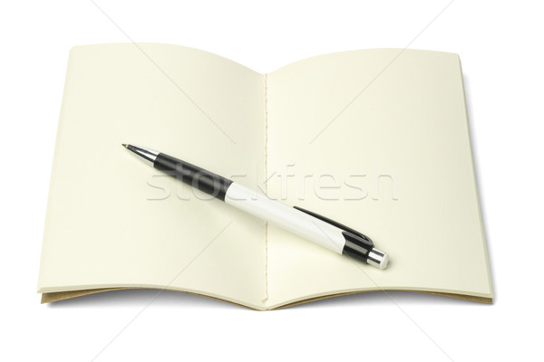 Thread Sew Book and Ball Point Pen Stock photo © dezign56