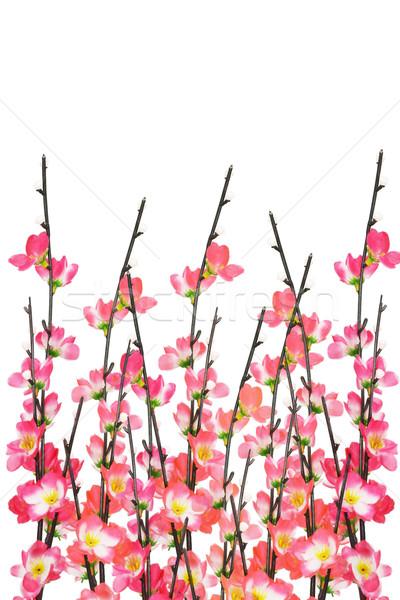 Kínai új év cseresznyevirágzás fehér ünneplés tárgy fesztivál Stock fotó © dezign56