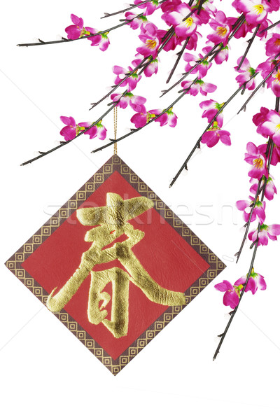 Spring and cherry blossoms  Stock photo © dezign56