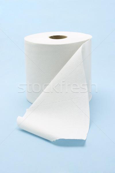 белый туалет катиться бесшовный синий бумаги Сток-фото © dezign56