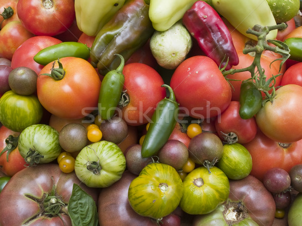background - organic vegetables Stock photo © dgilder