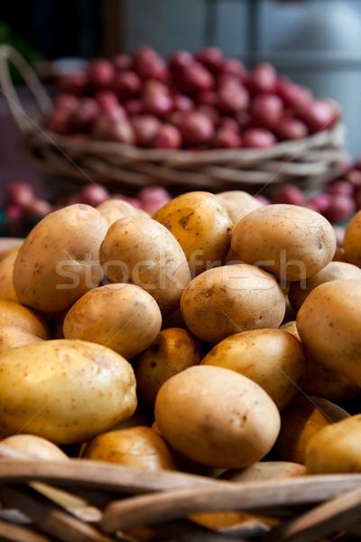 Ouro batatas sentar-se cesta local agricultores Foto stock © dgilder