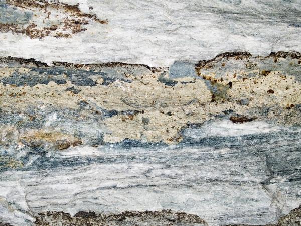 macro texture - stone - discolored Stock photo © dgilder