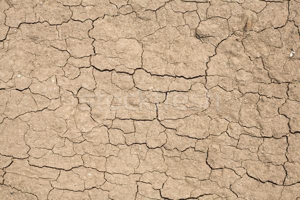Texturen bodem gebarsten vuil textuur nuttig Stockfoto © dgilder