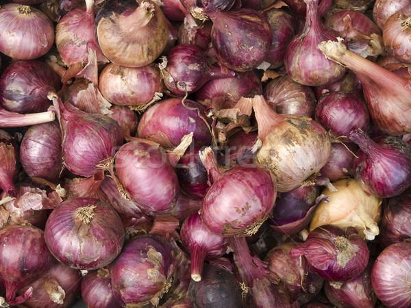Tárgyak vöröshagyma organikus helyi gazdák piac Stock fotó © dgilder