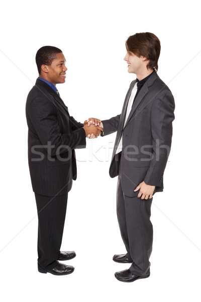 Stock photo: businesspeople - handshake greeting