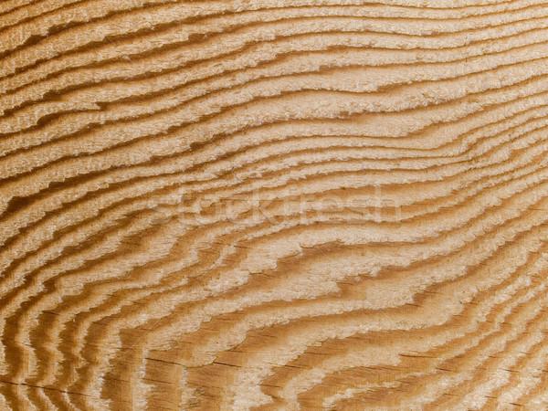 Makró textúra fa gabona stock fotó Stock fotó © dgilder