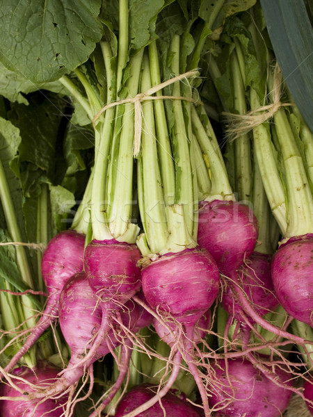 produce - organic beets background Stock photo © dgilder