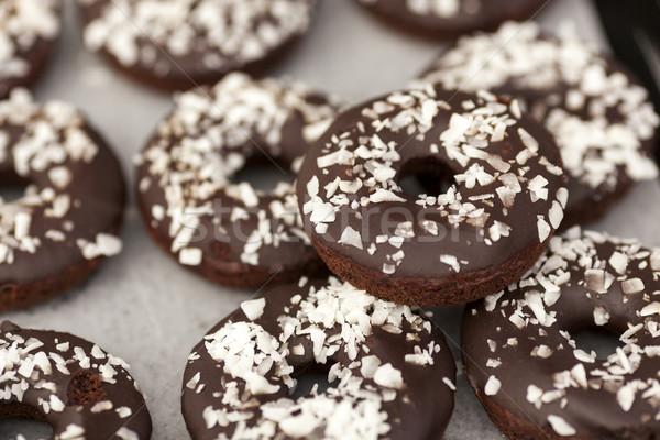 вегетарианский шоколадом покрытый торт кокосового Сток-фото © dgilder