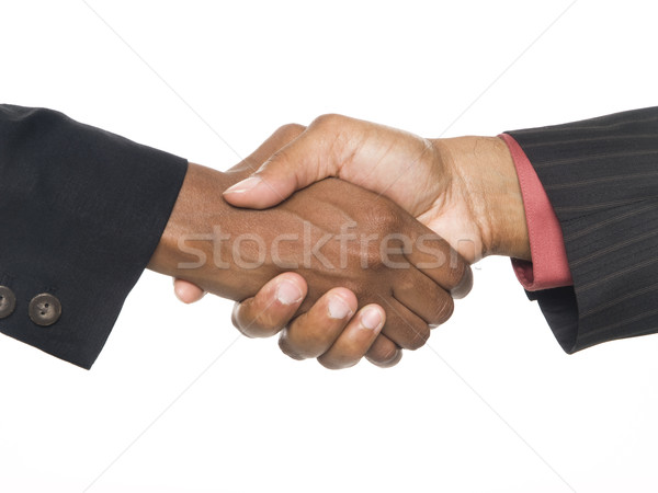 Gens d'affaires handshake sceau face Photo stock © dgilder