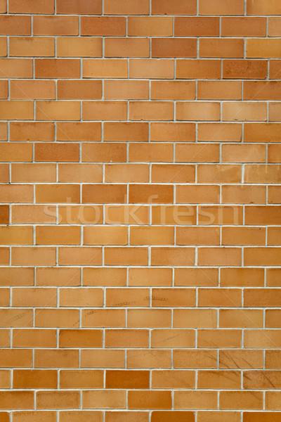backgrounds - brick wall Stock photo © dgilder