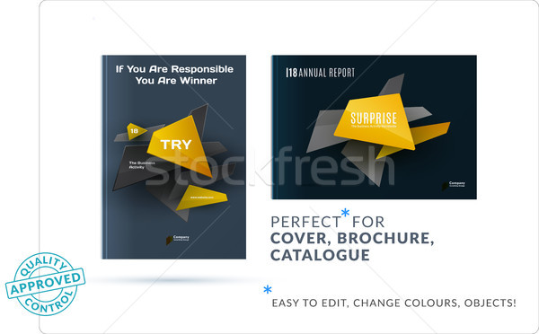 Design brochure résumé annuel rapport Photo stock © Diamond-Graphics