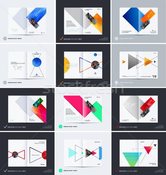 Streszczenie broszura projektu prostokątny stylu kolorowy Zdjęcia stock © Diamond-Graphics