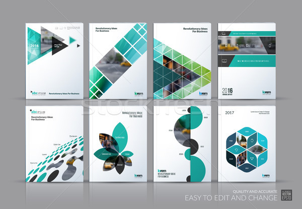 Business vector set. Brochure template layout, cover design annu Stock photo © Diamond-Graphics